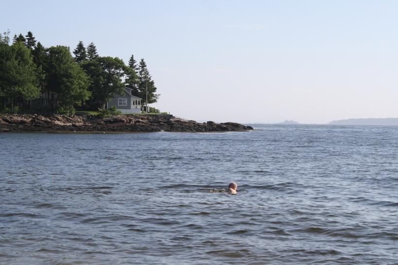 Le père de Chéri en train de nager (un moment, je ne le voyais plus, j'ai cru qu'il était mort d'hypothermie !!!)