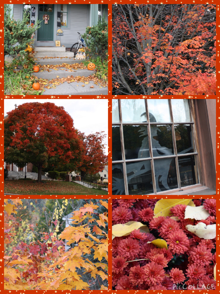PicCollageFallColors